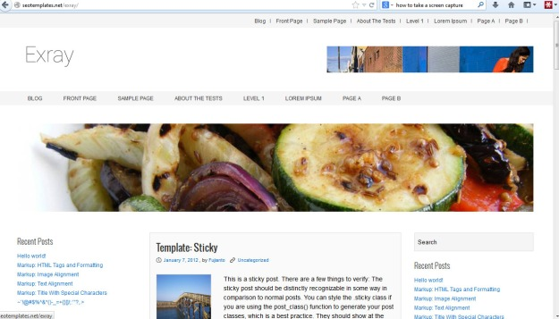 Screen shot of the wordpress theme exray