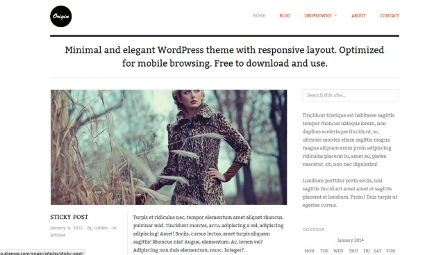 Captured Screen shot of the wordpress theme Origin